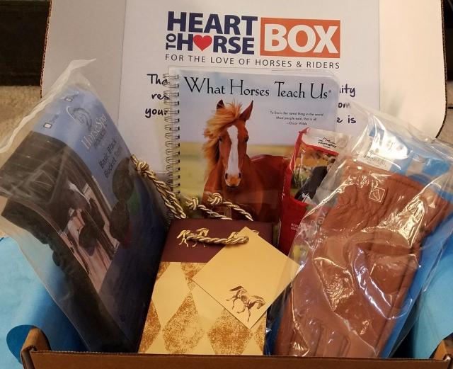 Heart2Horse Nov17