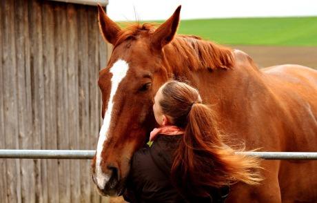 love-for-animals-2441268_960_720.jpg