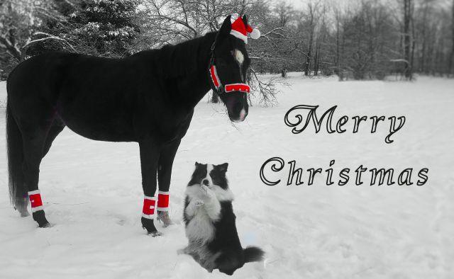 ChristmasKids